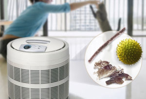 Air purifiers catch the smallest elements!