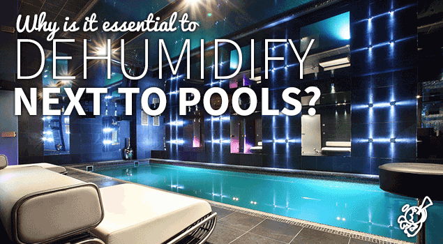 Pool dehumidifiers: why it is essential to dehumidify next to pools? post image