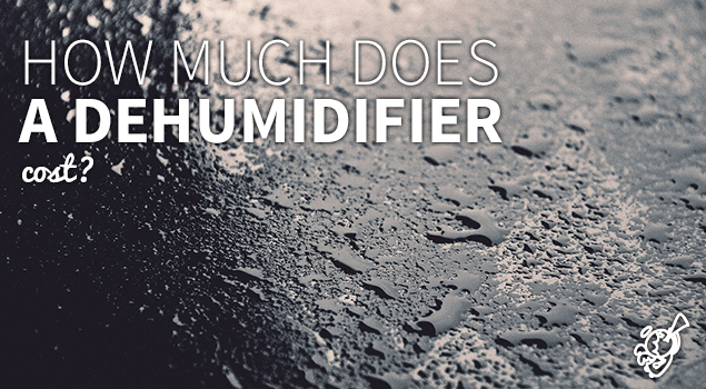 How much does a dehumidifier cost? post image