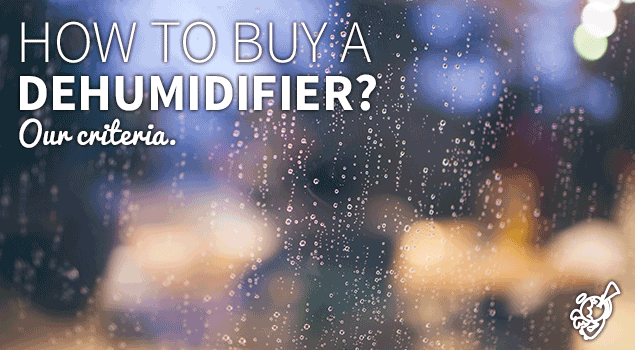 How to buy a dehumidifier? Our main criteria post image
