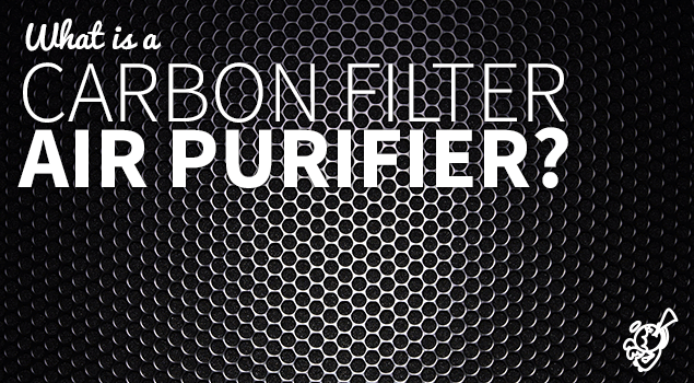 What is a carbon filter air purifier? post image