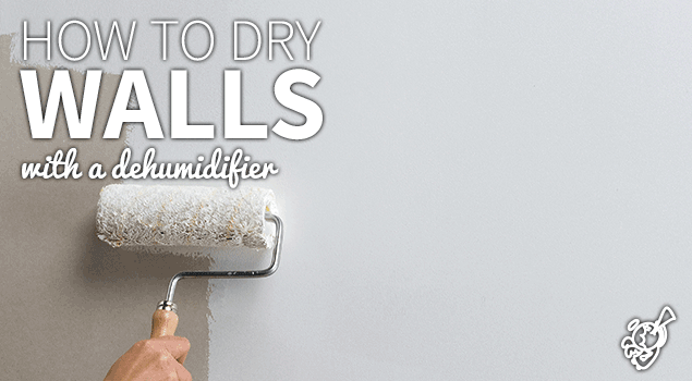 Dry walls using a dehumidifier: a DIY guide post image