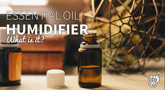 What is an essential oil humidifier? post image